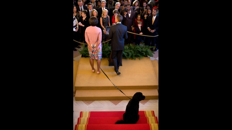 Bo, the Obama family dog, sits behind President Barack Obama and First Lady Michelle Obama, as the President delivers remarks during a holiday reception in the Grand Foyer of the White House, Dec. 15, 2010. (Official White House Photo by Pete Souza)
